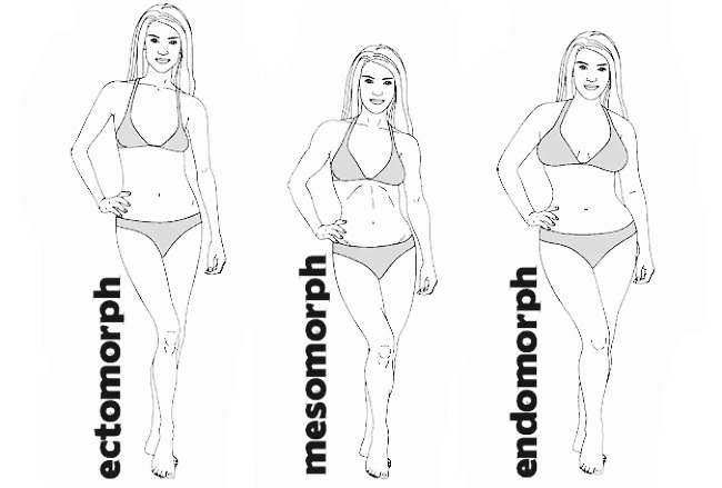 female-body-types2