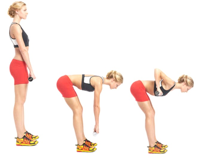 Bent-Over-Rows